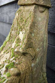 An Old Lichen Covered Stone Wi